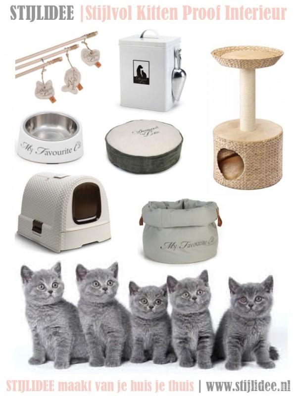 5 styling tips voor een stijlvol kitten proof interieur