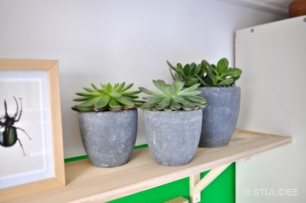 Breng de natuur in huis met … Urban Jungle Bloggers | Plant Shelfie | STIJLIDEE Interieuradvies en Styling