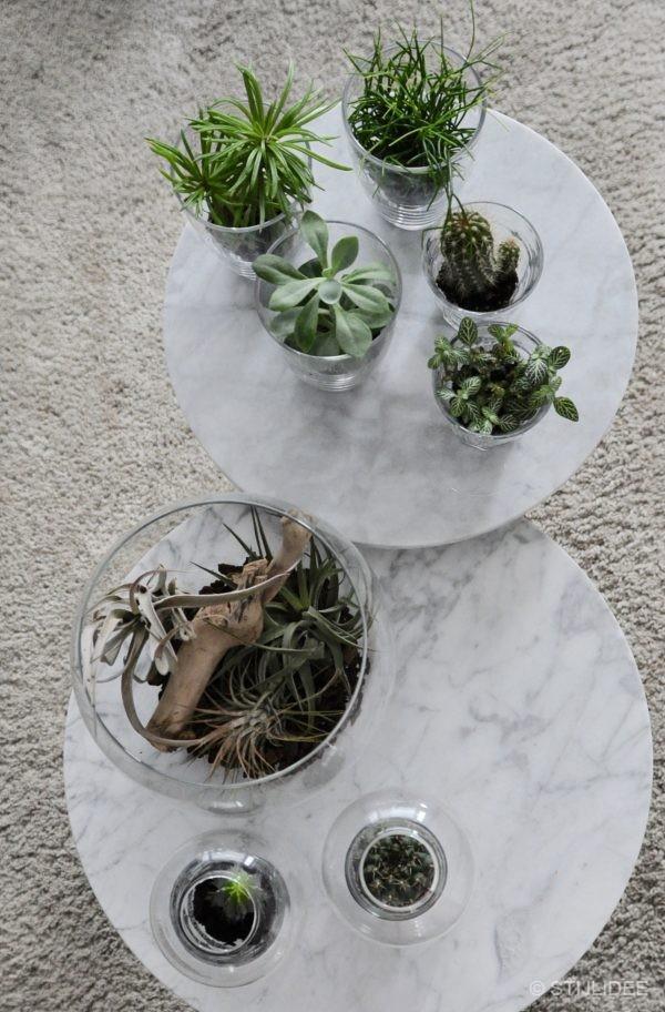 Urban Jungle Bloggers | Plants and Glass | Planten en Glas | STIJLIDEE Interieuradvies en Styling