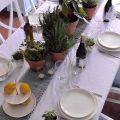 Urban Jungle Bloggers | Table Styling with Green Kitchen Herbs and Plants | Tafelstyling met Groene Keukenkruiden en Planten